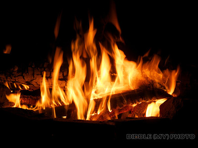 SH3# 1381 SFMH# 135 Burning's Backyard