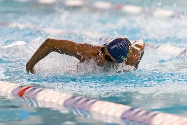 2019 - Swimming