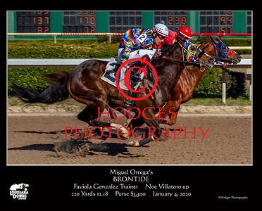 Louisiana Downs 2020 Quarter Horse