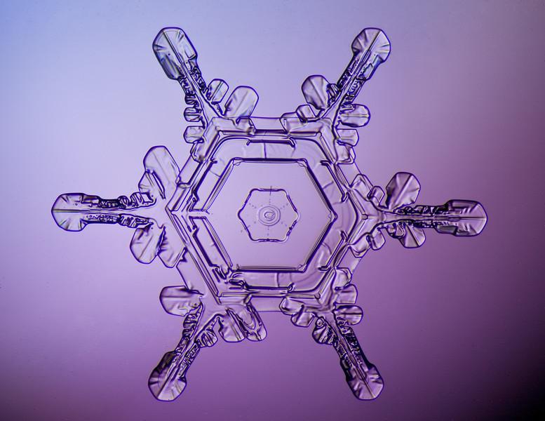 snowflake-0247-Edit.jpg