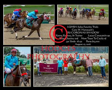 2016 Quarter Horse Season