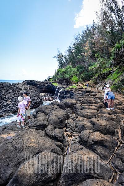 Kauai2017-244.jpg