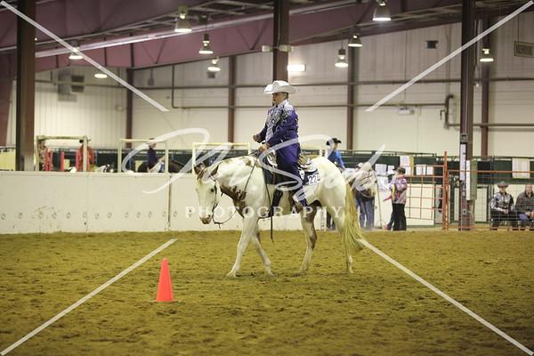 Western Horsemanship - LLoyd 2014