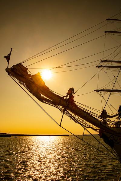 TallShipsRace2018Esbjerg-2018-07-20-_L8A1584-Danapix.jpg