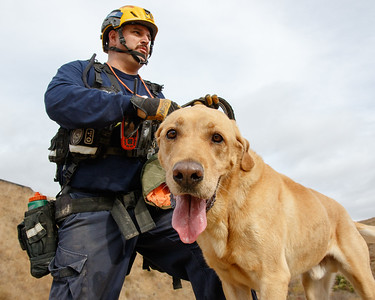 RTF4 / Search Dog Foundation