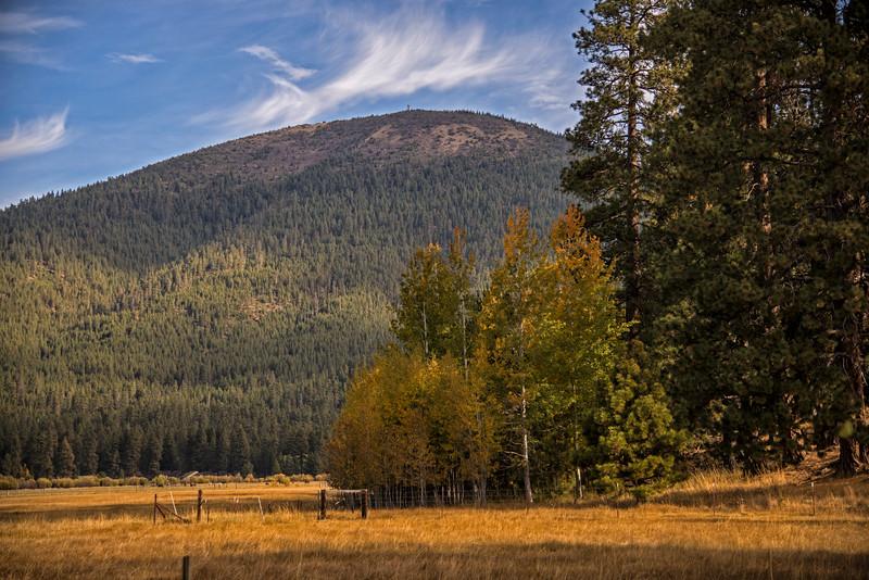 Fall-Aspens-Black-Butte_KateThomasKeown_DSC3205.jpg