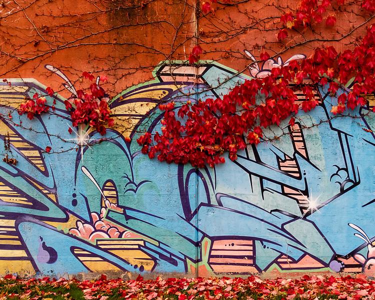 Grafitti in Autumn