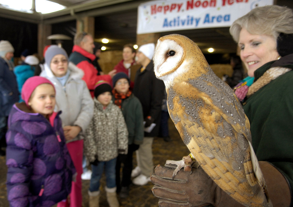 . Linda Clawson, a docent at the Cleveland Metroparks Zoo holds a barn owl for guests attending the Noon Year\'s Eve event in 2012. This year\'s Noon Year\'s Eve event is 10 a.m. to 1 p.m. Dec. 31 at the zoo. For more information, visit clevelandmetroparks.com/zoo.  (News-Herald file)