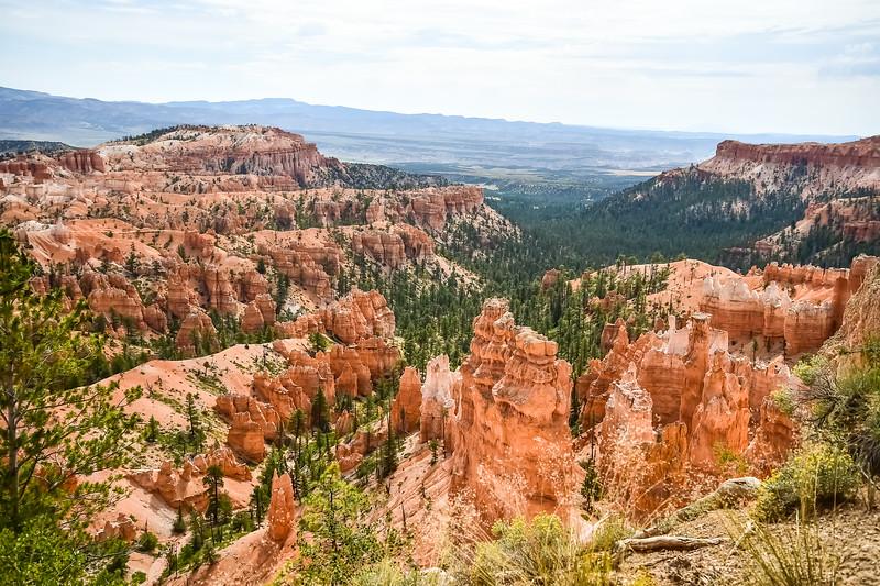 2019 Grand Canyon-108.jpg