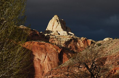 Capitol Reef Area Hikes 2013