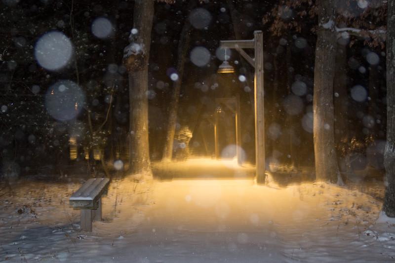 sdc-winter-20190119-407-IMG_2670.jpg