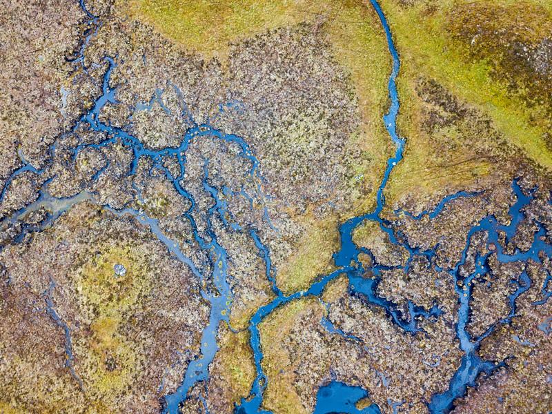 Wetland patterns on Rannoch Moor