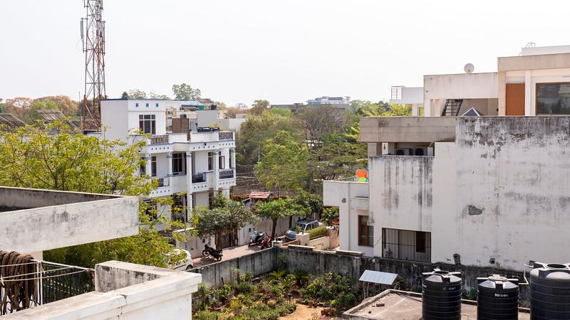 India-Jaipur-Ahimsagram07.jpg