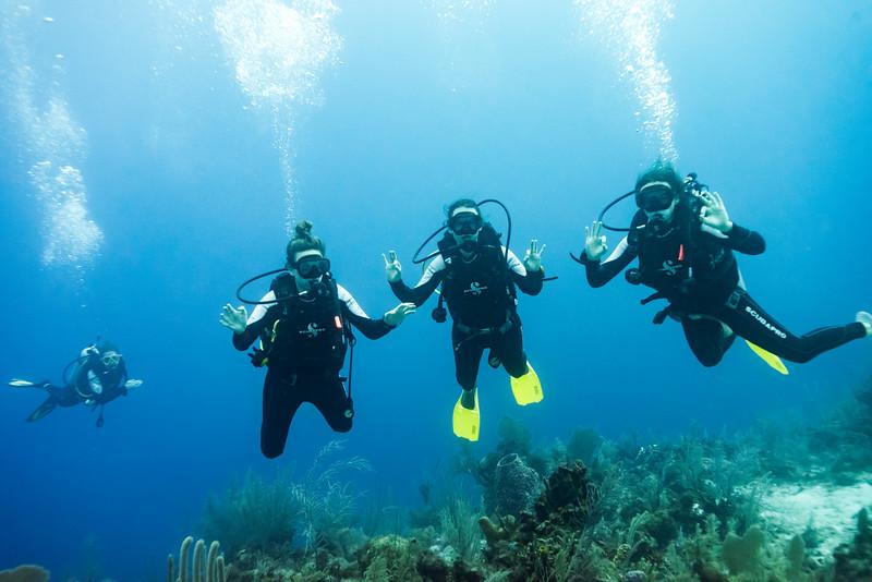 Scuba divers underwater, Joe's Wall, Turneffe Atoll, Belize Barrier Reef, Belize