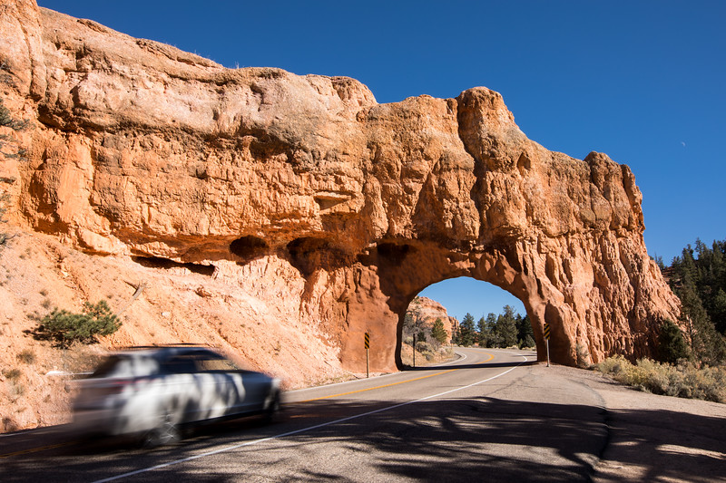 WVWS_Bryce Canyon-2995.jpg