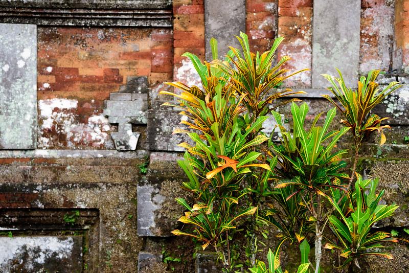 160217 - Bali - 2671.jpg