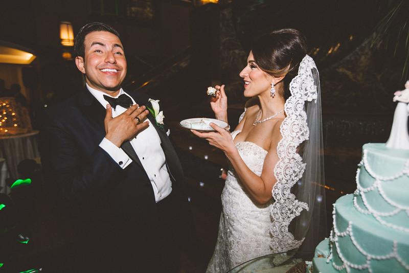 Le Cape Weddings_Sara + Abdul-619.jpg