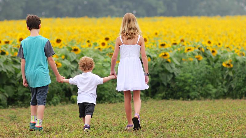 FamilySunflowers_ 88.jpg