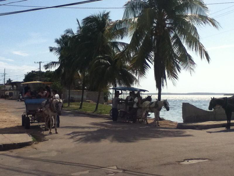 Princeton Journeys CUBA 2012 - Bloomfield Vossen 065