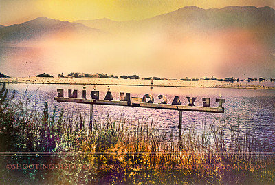 Postcard from the North Shore Marina, Salton Sea, 2001