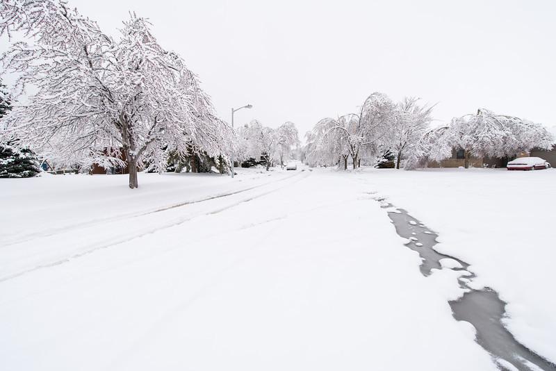 Fresh snow overnight.