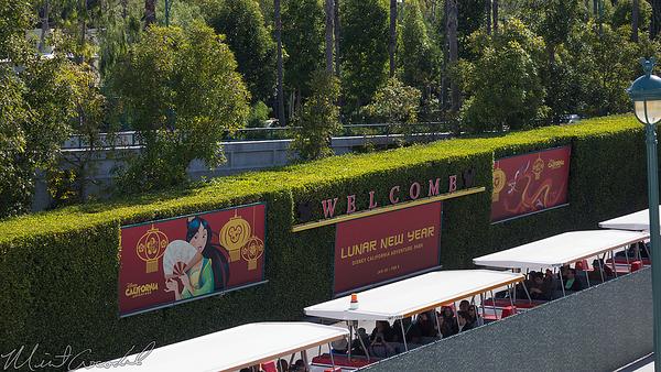 Disneyland Resort, Disneyland, Disney California Adventure, Lunar New Year, Lunar, New, Year, Rooster