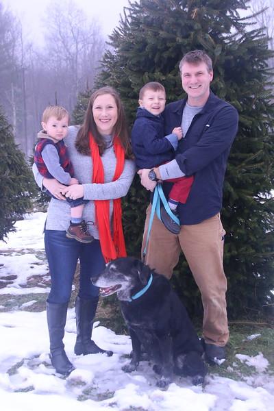 12-2-18 Matusick Christmas Tree Mini