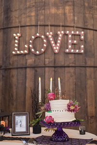 Cake Reception- Lindsey & Dan O'Brien- St.- The Inn At The Round Barn Farm, Waitsfield VT Wedding Photographer