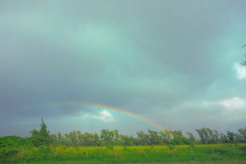 Rainbows at Shrimp Farms