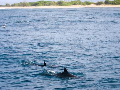 HI - NaPali Coast Kauai