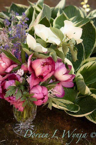 5259 Peaonia x 'Smith Opus 2' Takara - Cornus 'Venus' cut flowers_0947.jpg