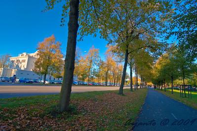 Autumn in Gothenburg 2009 Oct