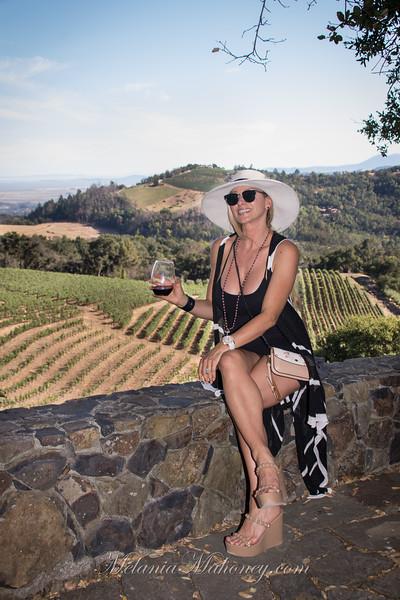 Kamen Winery 2019