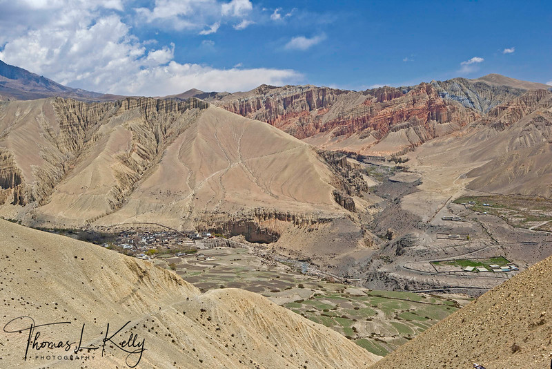 Ghemi Village, built on the edge of a steep cliff, appears in the distance (left). An oasis of green, red and gold in the mountainous desert of brown and grey. Mustang, Nepal.