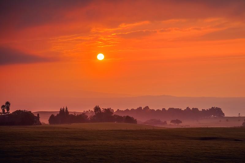 BI Sunset Print.jpg