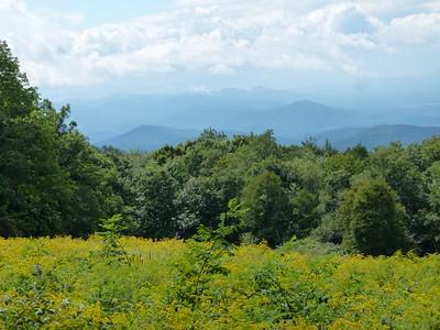 Regional Virginia