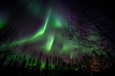 20200922, Aurora in backyard