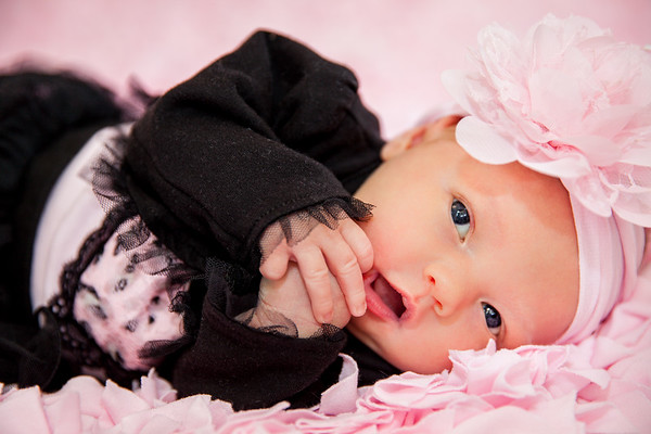 VanHouten - Newborn