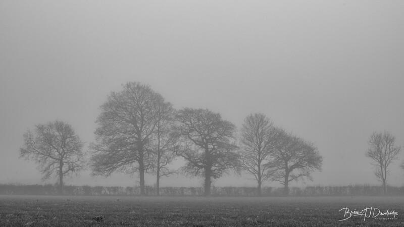 Foggy Hassocks-6923-Edit.jpg