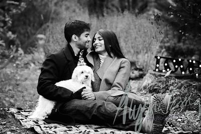 Abhi and Melissa | Engaged