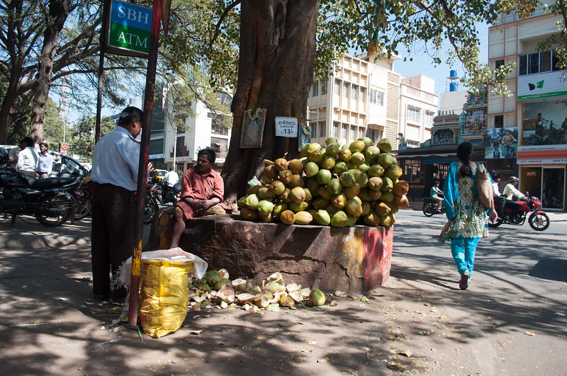 Bangalore-India-1042.jpg
