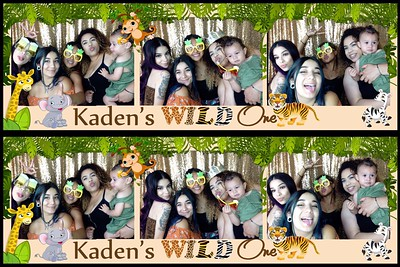 Kaden's Wild One