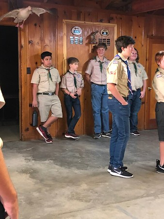 2019 Miscellaneous Scout House Pictures