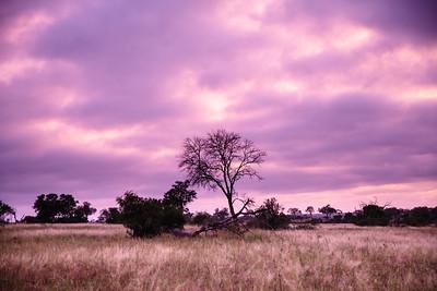 South Africa: Landscapes