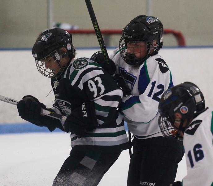 2016-Jan_29-Hockey-JPM0537.jpg