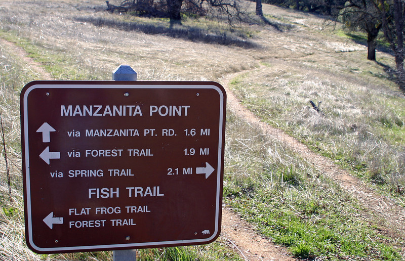 Near in to the headquarters, there were plenty of options for shorter, midlength, and longer loop trails. I wondered about the Flat Frog trail--maybe that Amphibious Assault Craft rolled over the wrong spot at the wrong time. There is a Fish Trail; maybe there's attractive diving there? But not according to the topo map--
