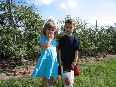 2004 Sep - Orchard