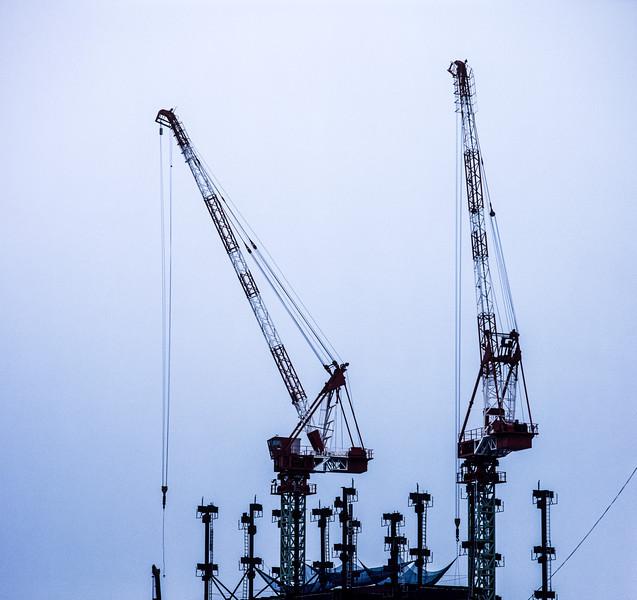Cranes, Himeji, Japan, 1990