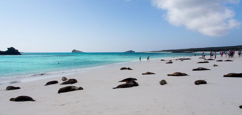 Galapagos_MG_4403.jpg
