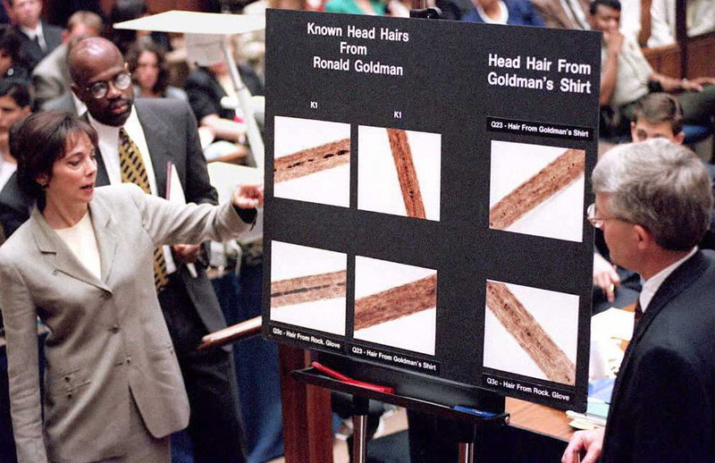 """. Lead prosecutor Marcia Clark (L) and Christopher Darden (2nd L) and FBI agent Douglas Deedrick stand at a chart showing hair samples from Ronald Goldman during direct examination 29 June during the O.J. Simpson double murder trial.  Deedrick testified hairs that were \""""forcibly removed\"""" were found on a bloody glove behind O.J. Simpson\'s house and matched the stabbing victims Nicole Brown Simpson and Ronald Goldman.              (POO/AFP/Getty Images)"""
